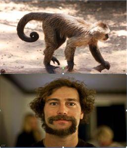 Monkey Tail