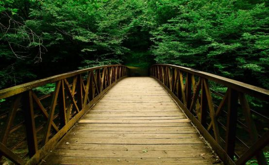 Picture found on:http://hdwallphotos.com/photoswall/beautiful-wooden-bridge-at-forest-wallpaper-hd.html