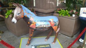 Cali donkey